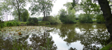 Bream Pond