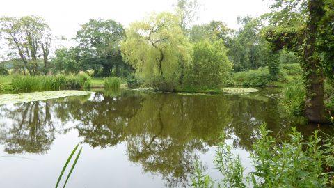 Newby Pond